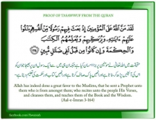 The Holy Prophet (ﷺ) 'Purified' the Believers